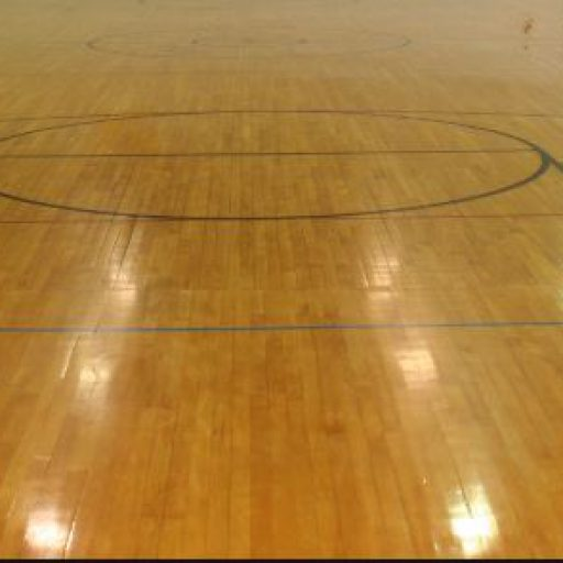 cropped-gym-floor-with-striping3.jpg
